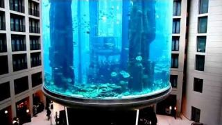 Aqua Dom`s elevator