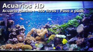 ACUARIO MARINO 450 LITROS ( PASO A PASO )