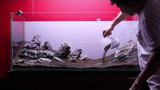 Montaje de acuario plantado paso a paso