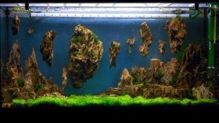 Montaje de acuario con piedras flotantes