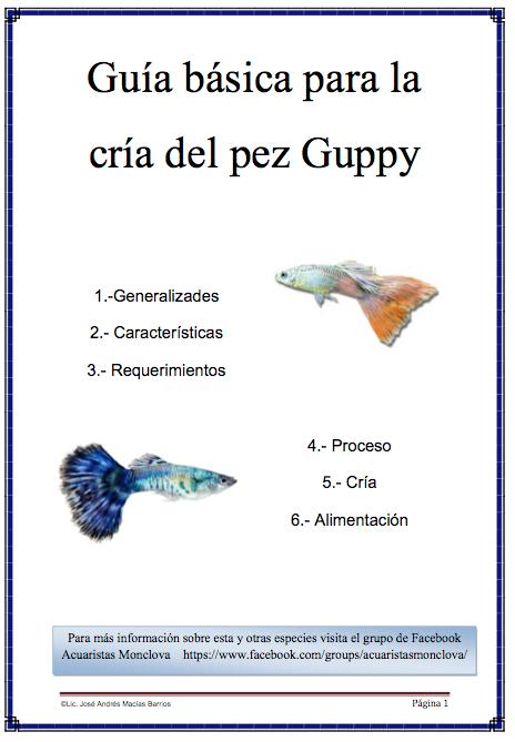 Guía básica para reproducción de Guppys